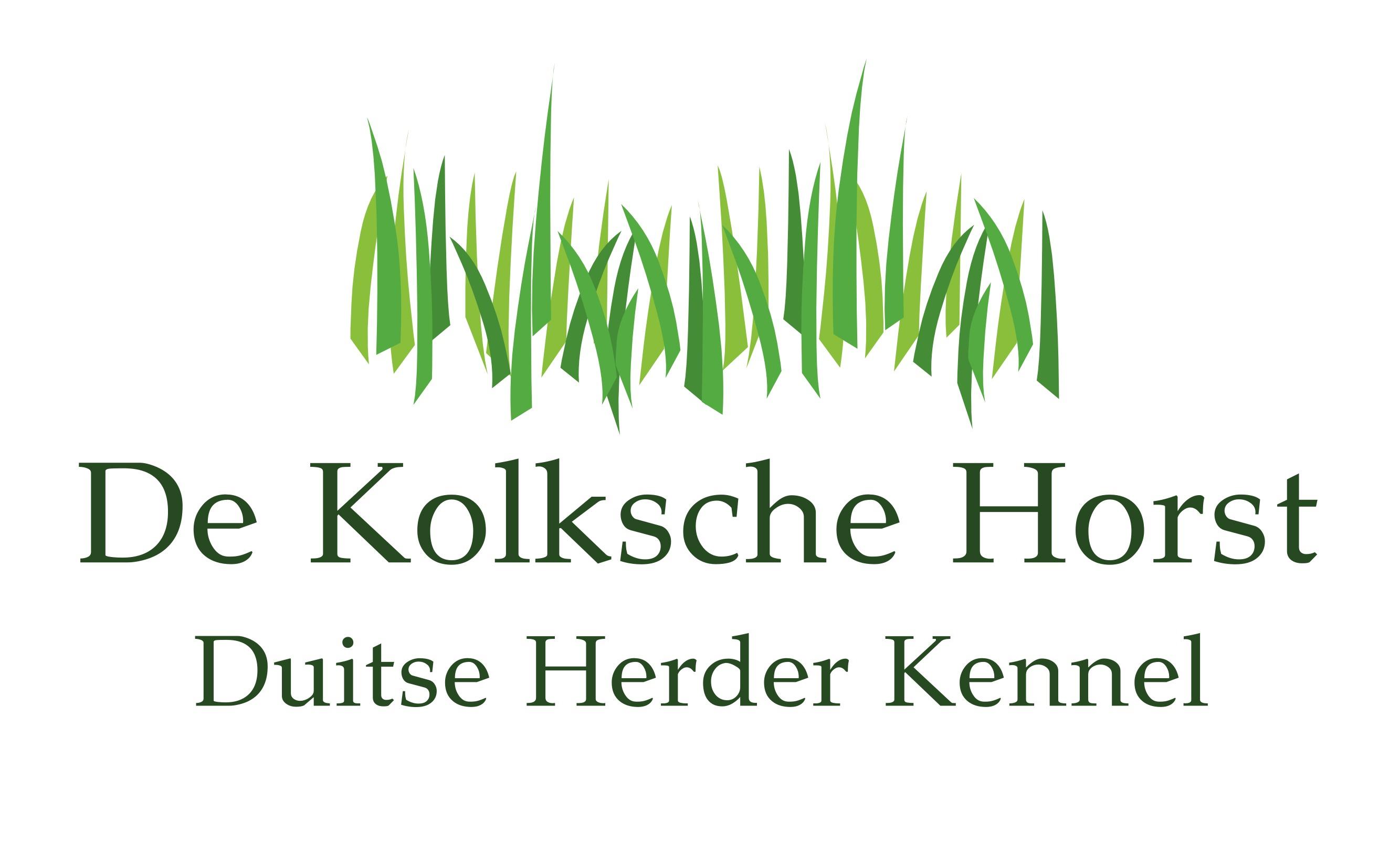 De Kolksche Horst