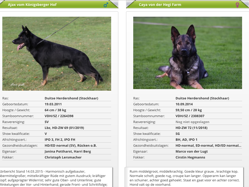 De Kolksche Horst Nestaankondiging Working Dog